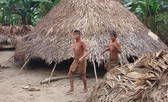 CNA llama a voto consciente e informado para defender derechos indígenas