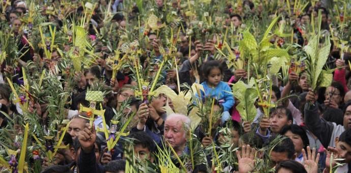 Multitudinaria bendición de palmas y ramos en la catedral del Cusco