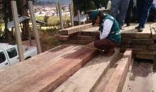 Decomisan 1 800 pies tablares de madera aserrada de la especie Copaiba