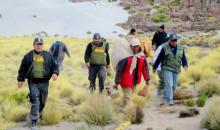 Moquegua: Dictan prisión preventiva por 6 meses a cazador furtivo de vicuñas
