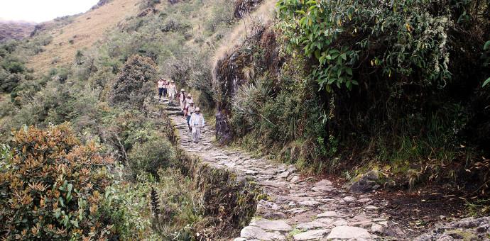Desde este 01 de febrero se cierra Camino Inca de MachuPicchu