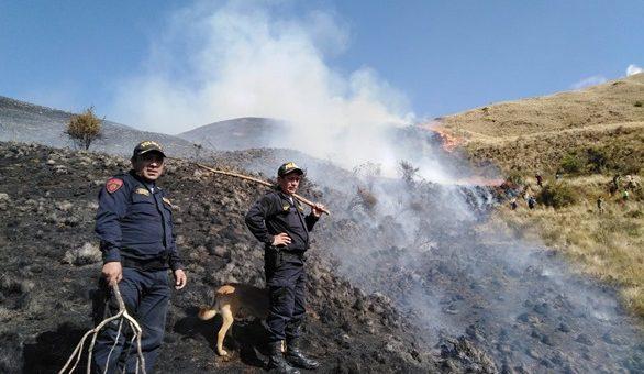 Incendio forestal destruyó unas 50 hectáreas de arbustos y plantas silvestres en Paucartambo