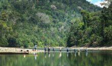 Teledetección: nueva tecnología para preservar la Amazonía