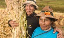Las Bambas apoya proyecto de cultivos andinos en Challhuahuacho, Mara, Tambobamba y Progreso