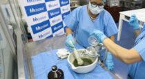 Distribuirán gratuitamente repelente natural para prevenir propagación del dengue