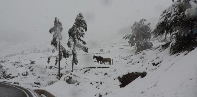 Senamhi advierte lluvias y nevadas en Cusco.