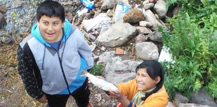 Peces mueren en el Valle Sagrado de los Incas por contaminación del Vilcanota