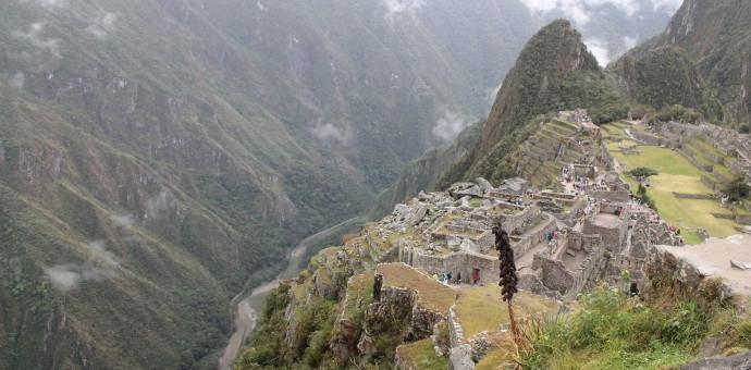 Guardabosque de Machu Picchu muere al caer de 30 metros