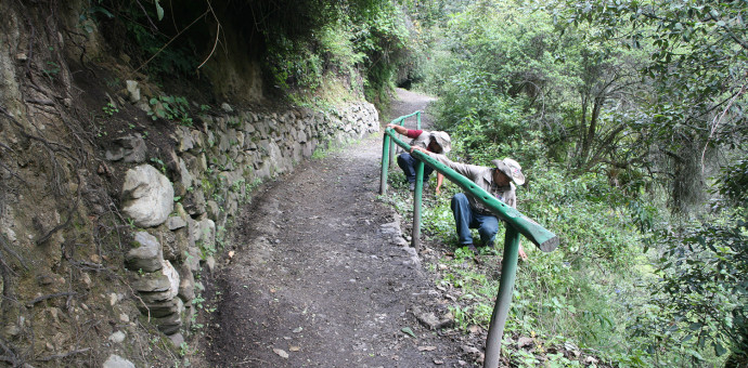 Concluyen conservación y mantenimiento de la red de caminos inca en Machu Picchu