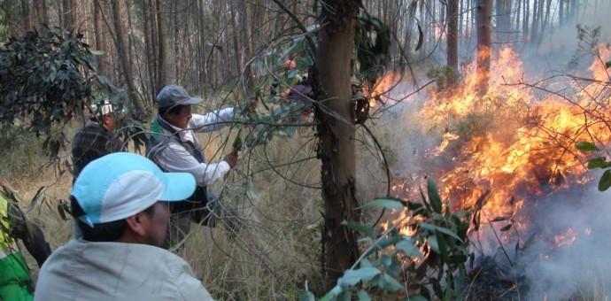 Imágenes impresionantes del voraz incendio que nuevamente devastó el cerro Picol