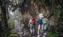 Reabren al turismo nacional y extranjero la red de camino inca