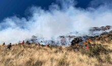 Bomberos cusqueños atendieron 12 incendios forestales en una semana